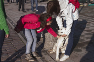 Sõbralik silitaja, arglik koer